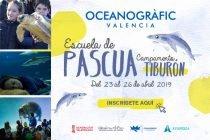 Escuela Pascua Oceanografic 2019 600x400px