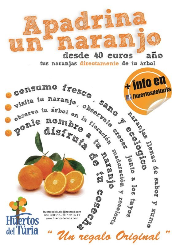 Apadrina Naranjo Huertos Del Turia