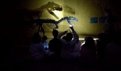 Al Museo En Pijama Didac 3