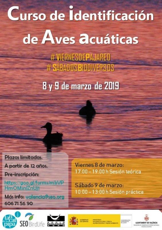 Curso Identificación Aves Acuáticas Tancat Pipa