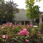 Muvim Museo