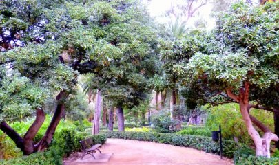 Parque Ayora