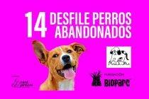 Desfile Perros Abandonados Bioparc 2019 Banner