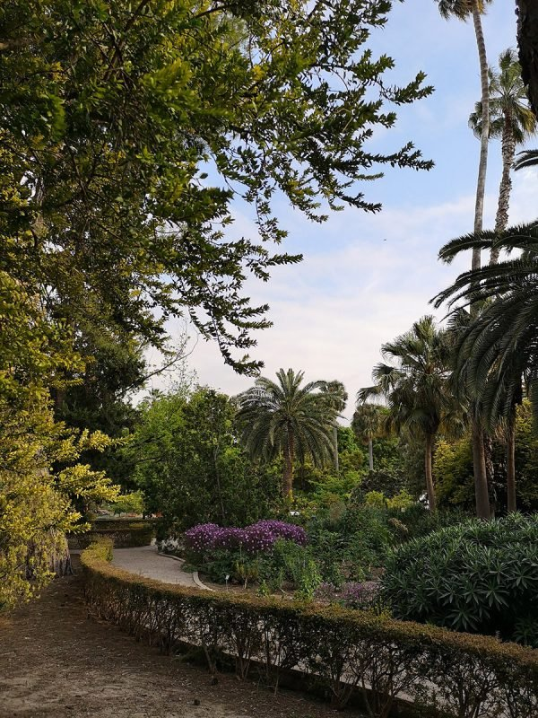 Jardin Botanico Valencia 2