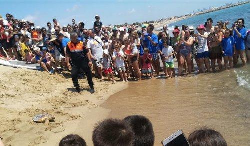 Suelta Tortuga Playa Puçol
