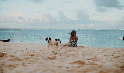 Playa Perros 2
