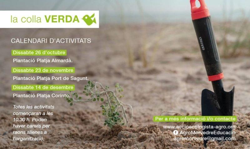 Colla Verda Plantacion Playa Sagunto 2019