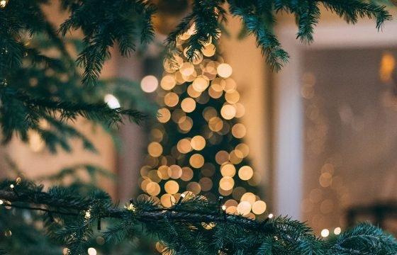 Navidad Celebracion
