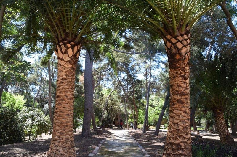 Jardin Dehesa Castell Burjassot 4