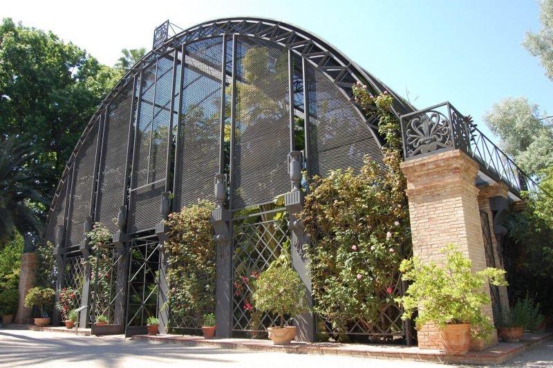 Visitas Guiadas Botanico 10