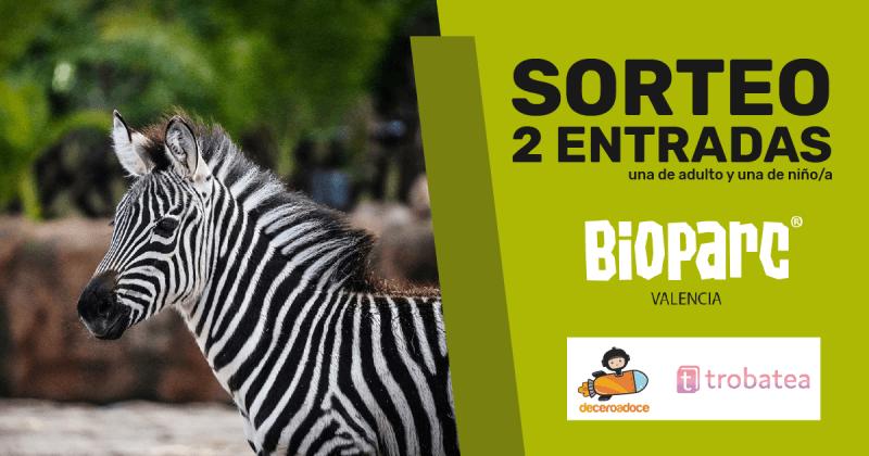 Sorteo Bioparc 01b