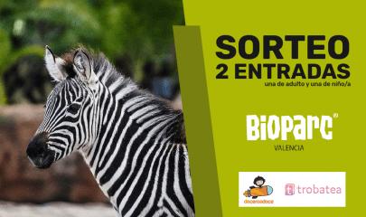Sorteo Bioparc 03b