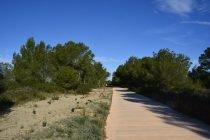 Parque Natural Albufera 1