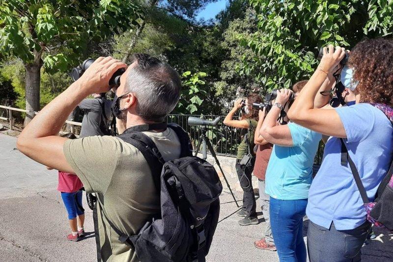 Observacion Aves Canal Navarres