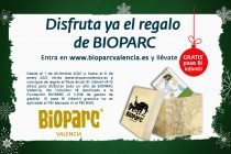 Bioparc Navidad 2020 Destacado