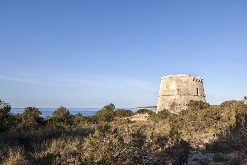 Torre Des Pi Des Catala Formentera