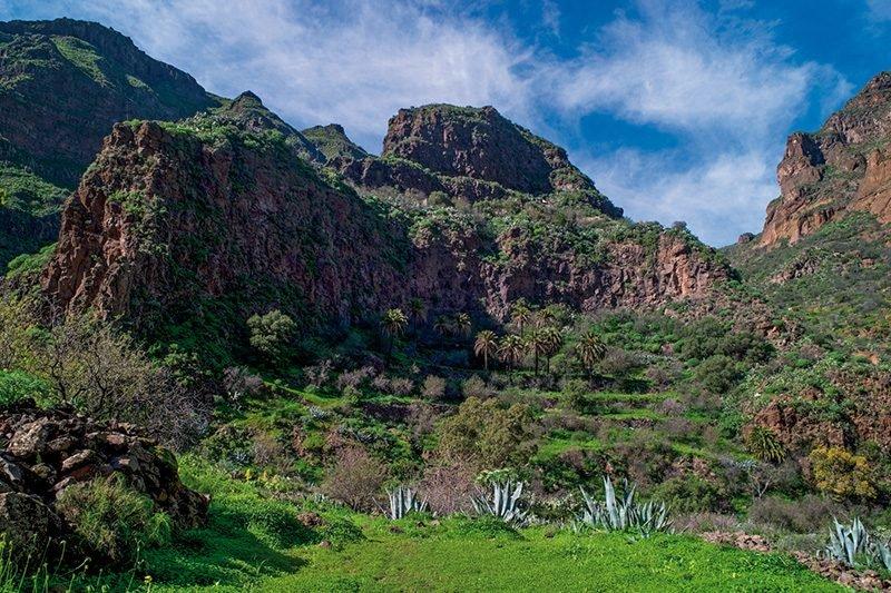 Barranco Guayadeque