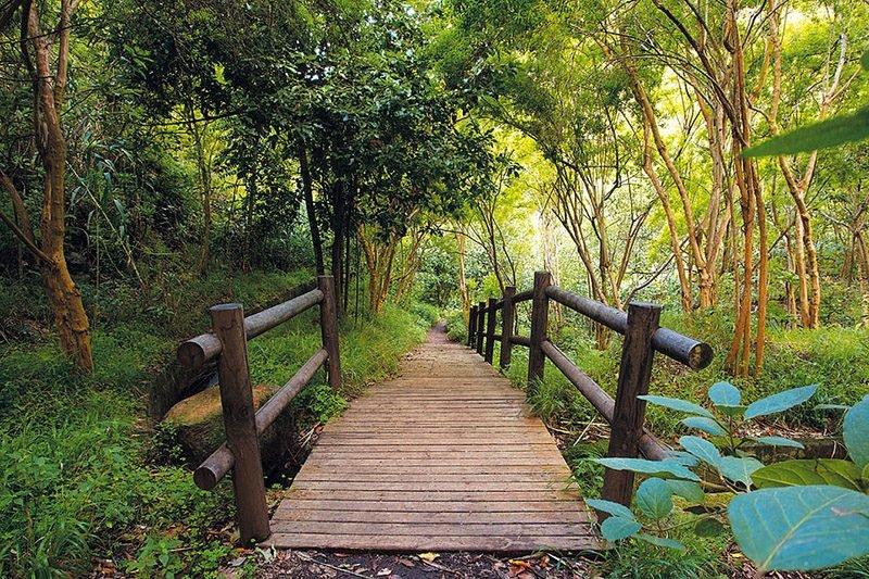 Reserva Natural Tilos